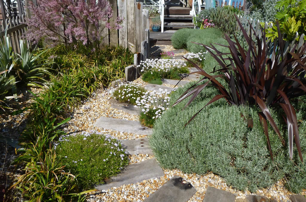 Beach gardens gallery for Small area planting ideas