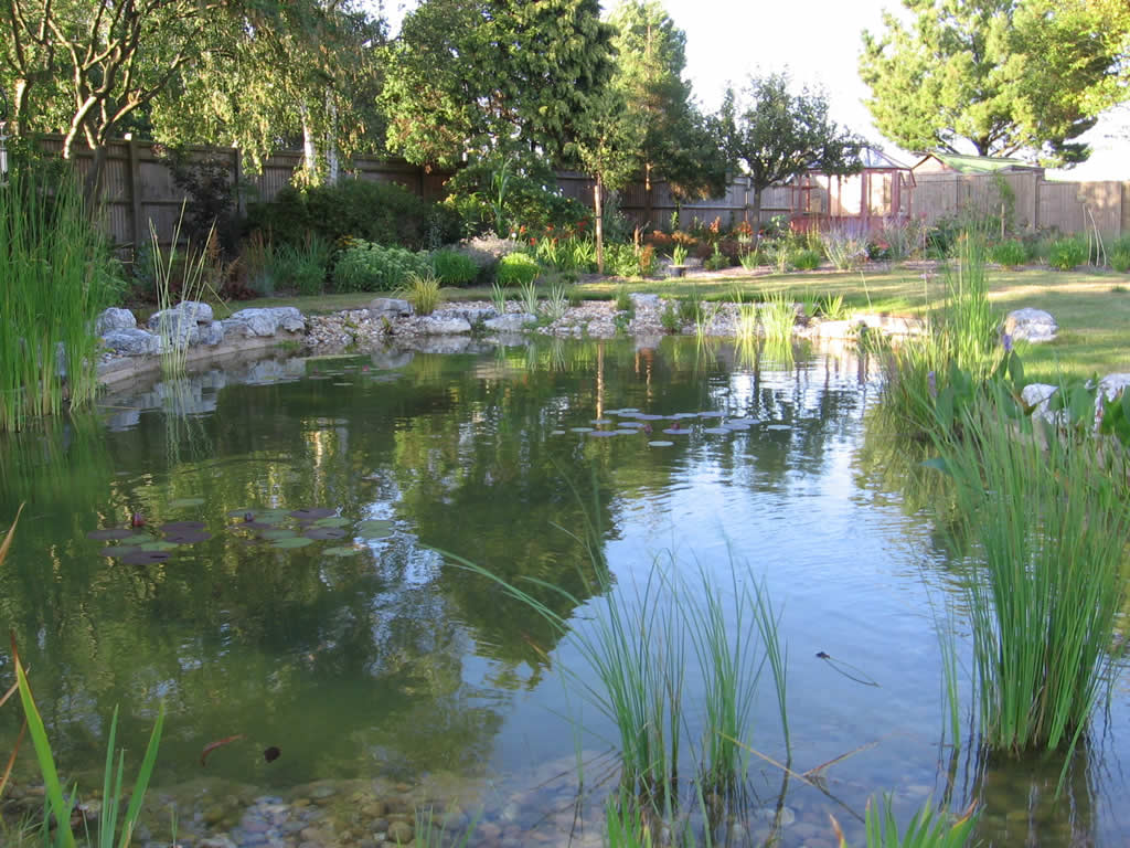 Garden ponds gallery for Pond landscape